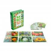 Eğitici Oyuncaklar İlk 50 Sebze Ve Meyveler