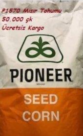 Pioneer P1570 Mısır Tohumu 50.000 Çk (Standart)(Ücretsiz Kargo) Yüksek Verim İri Dane Fao Değeri 600 5,5 Da Eker