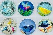Buzdolabı Magnet Mıknatıslı Süs 6 Adet Kuş Figürlü Cam Bombeli