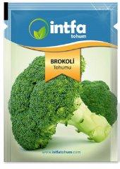 Brokoli Tohumu 5 Gr 1.200 Adet Tohum