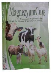 Magnezyumcure 200 Gr Ruminant Hayvanlar İçin Sindirim Sistemi Düzenleyici Premiks