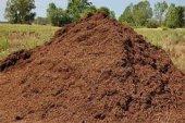 Torubahçe 20 Lt Sığır , İnek , (Büyük Baş Hayvan Gübresi) Çiçek Ve Bitkileriniz İçin