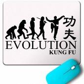 Evolution Human Evrim Kung Fu Kungfu Karate Mouse Pad