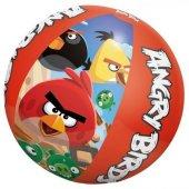 Angry Birds Deniz Topu