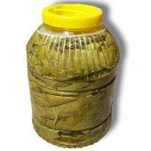 Salamura Asma Yaprağı 5 Kg. Lık Pet Doğal Ürün