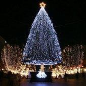 100 Ledli Gün Işığı Yılbaşı Ağacı Işığı Led Ampül