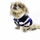 Parliament Blues Polo Yaka Tişört Köpek Kıyafeti Köpek Elbisesi