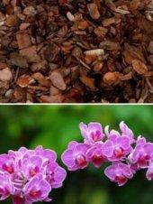 Orkide Toprağı Orkide Coşturanözel Karışımlı 1 Adet Bedava