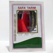 Safa Tarım Crimson Sweet Karpuz Tohumu 10 Gr.