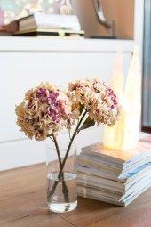 Beyaz Hydrangea Çiçek