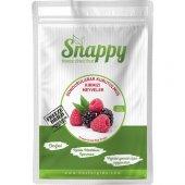 Snappy Freeze Dried Kırmızı Meyveler 20 Gr